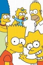 Watch Vodly The Simpsons Online